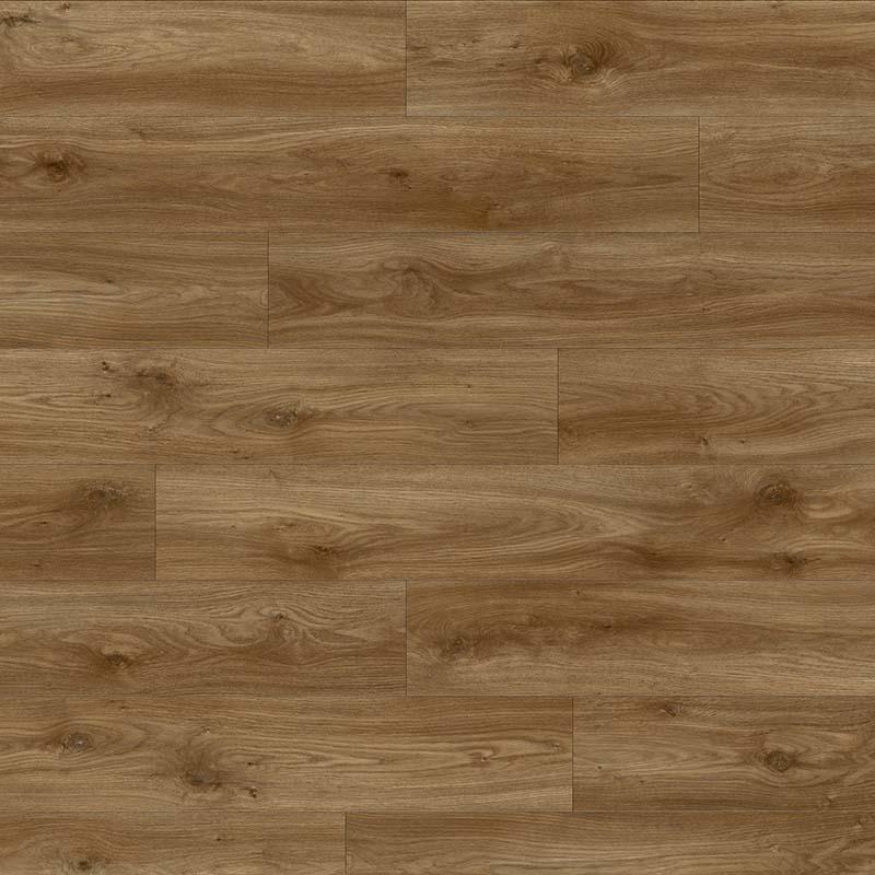 Sierra Oak 58876